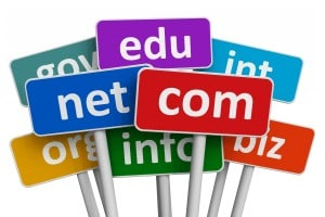 Top Level Domains (TLDs)